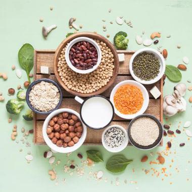 رژیم گیاه خواری برای چاقی چه ویژگیهایی باید داشته باشد