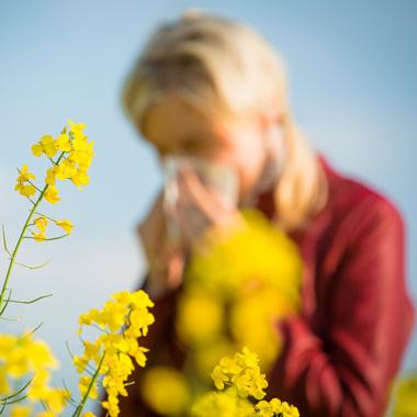 حساسیت فصل بهار + معرفی راهکارهایی برای درمان حساسیت فصلی در منزل