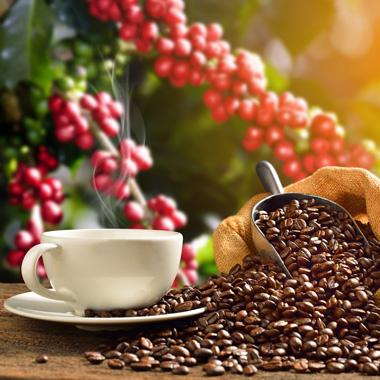 خواص کافئین برای سلامتی و زیبایی