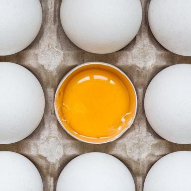 تخم دو زرده پروتئینها؛ از خواص تخم مرغ بیشتر بدانید