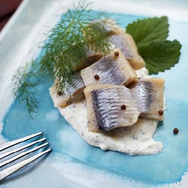 طرز تهیه سالاد دریایی