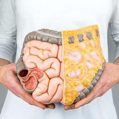 رژیم پاکسازی روده با مصرف ۸ ماده غذایی