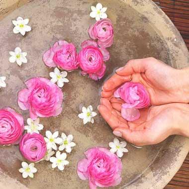 آشنایی با ۸ خواص گلاب برای پوست صورت