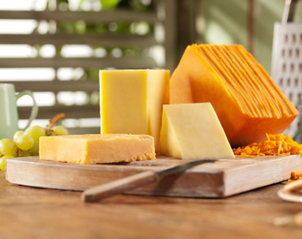 فواید پنیر چدار
