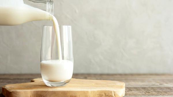شیر سرشار از پروتئین