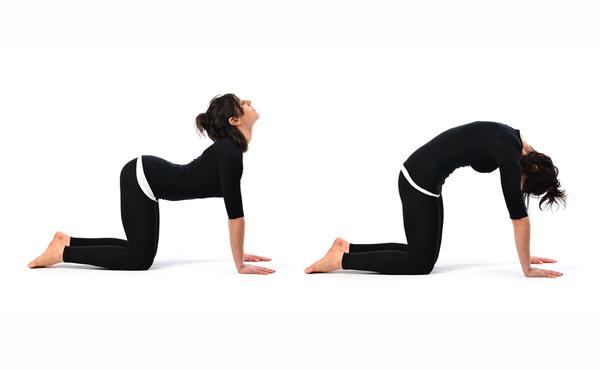 ورزش کمردرد