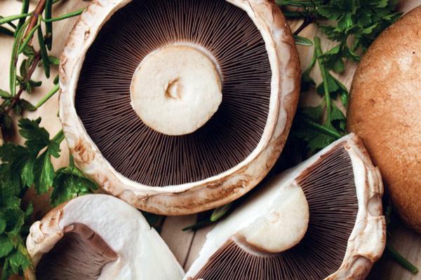 قارچ پرتوبلو