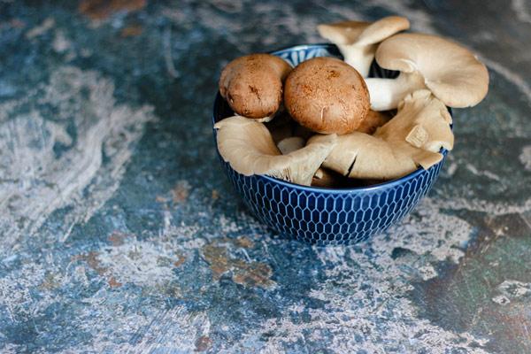 خاصیت ضدالتهابی قارچها
