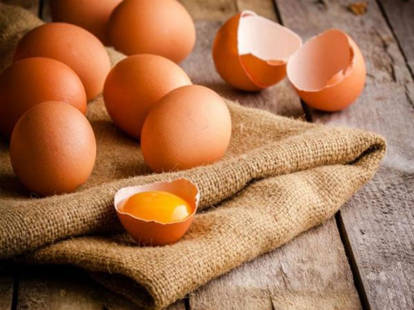 خواص زرده تخم مرغ چیست