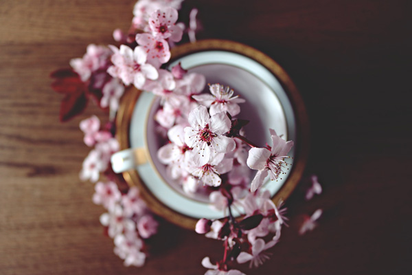 چرا بهار بهترین زمان برای حجامت است